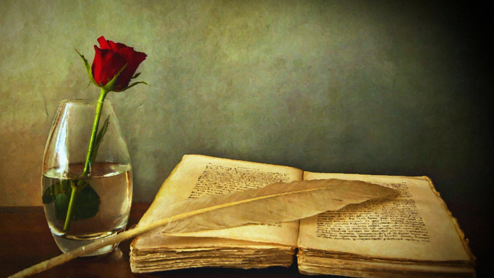 Still life of a beautiful old book and a rose in a wineglass